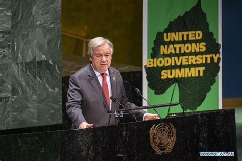 UN chief calls for greater ambition to reverse