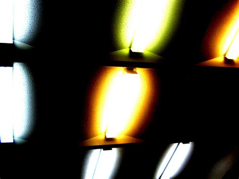 photography: Elements of Comprehetion
