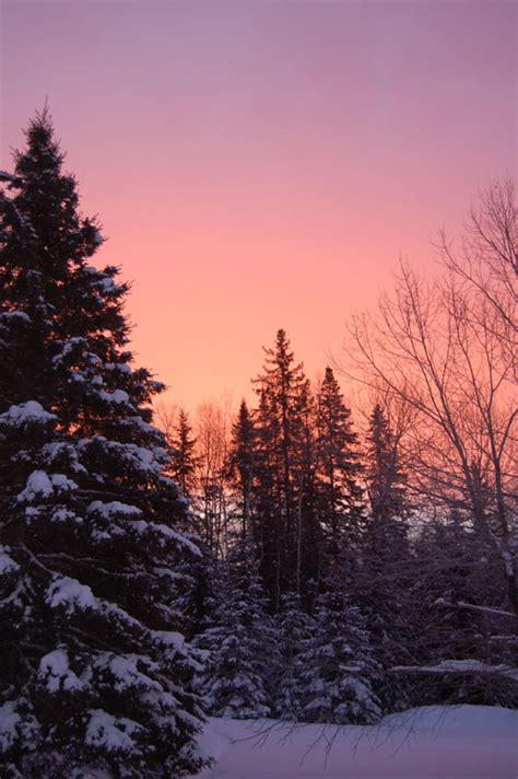 Paysage d hiver 3, a photo from Quebec, Central | TrekEarth