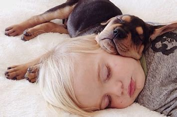 This Puppy And Baby Are The Most Adorable Nap Time Pals