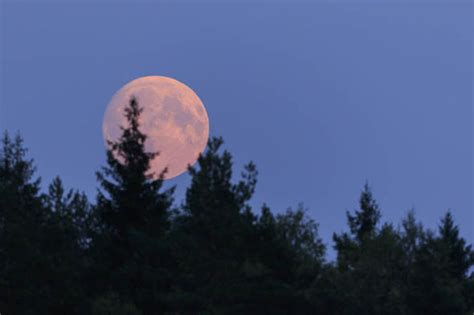 Strawberry Moon 2018 meaning: Why is June full moon called